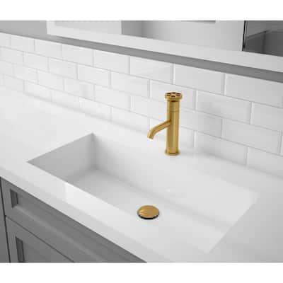 Nova Single Hole 1-Handle Bathroom Faucet in Brushed Titanium Gold finish