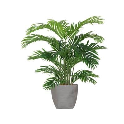 48 in. Tall Palm Tree Plants with Eco Planter