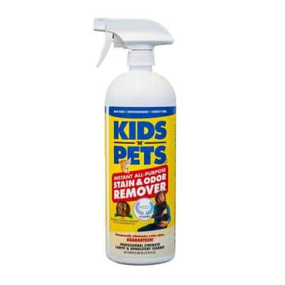 27 oz. Fabric and Upholstery Stain and Odor Remover