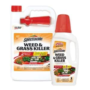 Weed and Grass Concentrate and Ready to Use Bundle Pack