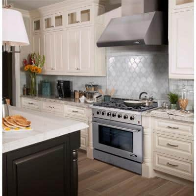 Entree Bundle 36 in. 5.5 cu. ft. Pro-Style Gas Range with Convection Oven and Range Hood in Stainless Steel and Black