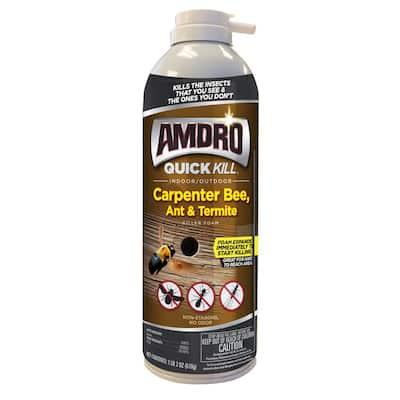 18 oz. Quick Kill Carpenter Bee, Ant, and Termite Killer Foam