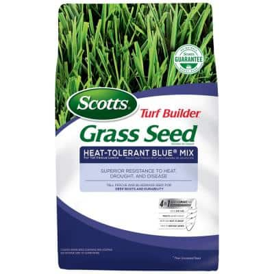 Scotts 7 lb. Turf Builder Grass Seed Heat-Tolerant Blue Mix