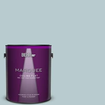 1 gal. #MQ3-54 Dayflower One-Coat Hide Ceiling Flat Interior Paint & Primer