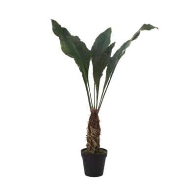 Woven Roots Faux Tropical Plant with Pot