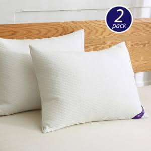 Soft Knit Silver Duck Nano Feather Jumbo Pillows (2-Pack)