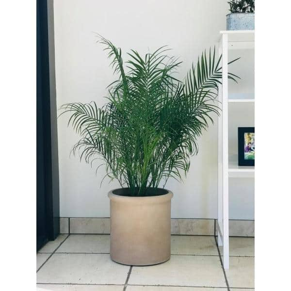Kante Large 17 7 In Tall Desert Sand Lightweight Concrete Round Classic Outdoor Planter Rc0068c C70381 The Home Depot
