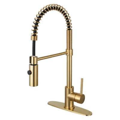 Concord Pre-Rinse Single-Handle Pull-Down Sprayer Kitchen Faucet in Brushed Brass