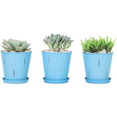 Monarch Blue Stonewashed Flower Succulent Pots Planter with Drainage Hole (Set of 3)