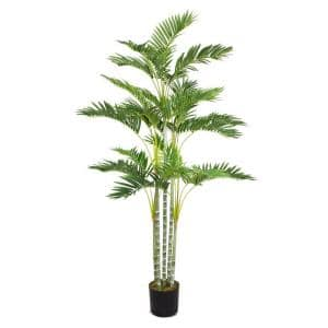 38 in. x 38 in. x 68 in. H Palm Tree