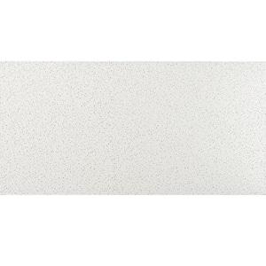 2 ft. x 4 ft. Radar White Square Edge Lay-In Ceiling Tile, pallet of 160 (1280 sq. ft.)
