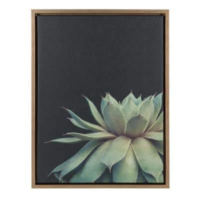 """Sylvie """"Succulent 8"""" by F2Images Framed Canvas Wall Art"""