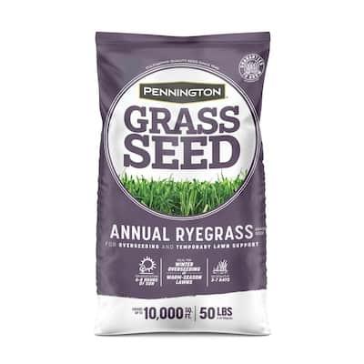 50 lb. Annual Ryegrass Grass Seed