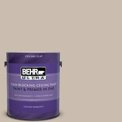1 gal. #PPU5-13 Creamy Mushroom Ceiling Flat Interior Paint and Primer in One