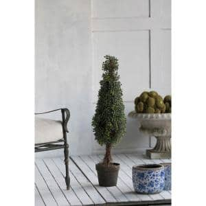 Boxwood Green Tree Topiaries