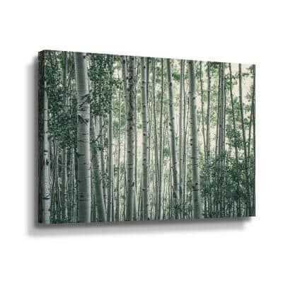 Obscured by Alters' by Eunika rogers Canvas Wall Art