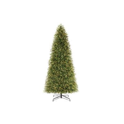 12 ft. Jackson Noble Fir LED Pre-Lit Artificial Christmas Tree with 2000 Color Changing Micro Dot Lights