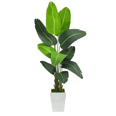 5.5 ft. Travelers Palm Artificial Tree in White Metal Planter