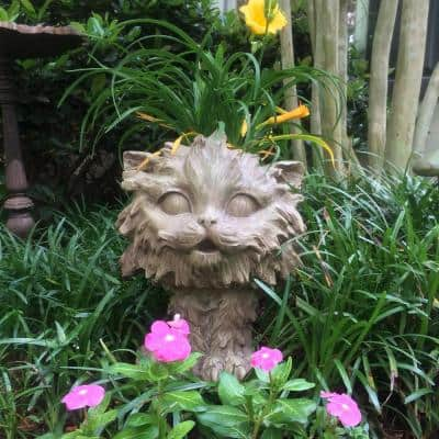 12 in. Stone Wash Scruffy the House Cat Muggly Planter Statue Holds 4 in. Pot
