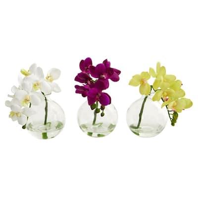 9 in. Phalaenopsis Orchid Artificial Arrangement in Vase (Set of 3)