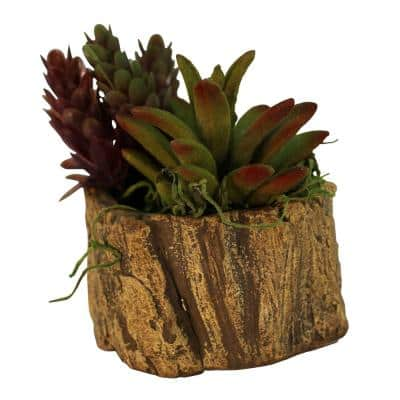 3 in. x 3 in. x 2.25 in. Driftwood Ceramic Wood Plant Pot - Unique Succulent Planter Stump Log