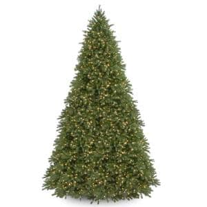 12 ft. Jersey Fraser Fir Tree with Clear Lights