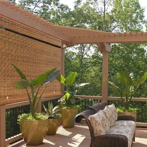 Radiance Fruitwood Cordless Light, Roll Up Outdoor Shades