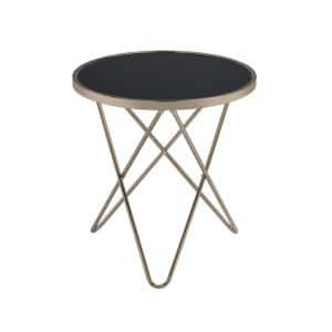Valora 22 in. W Champagne End Table with Top Black Glass