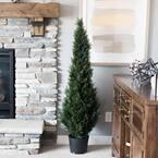 4 ft. Potted Cedar Tree (UV)