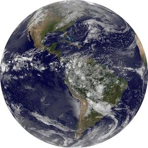 Earth Blue Non Woven Dot Decal