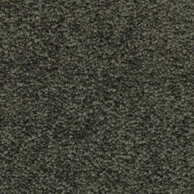 Unblemished I-Color Willow Textured 12 ft. Carpet
