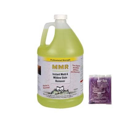 Pro 1-gal. Instant Mold/Mildew Stain Remover & 2 oz. Concentrate (Makes 1-gal each) Mold/Mildew Disinfectant