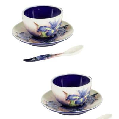 Iris Hand Painted Porcelain Cup And Saucer Set (2-Piece)