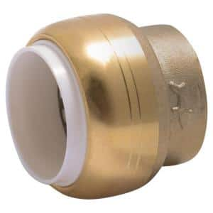 1/2 in. Push-to-Connect PVC IPS Brass End Stop Fitting