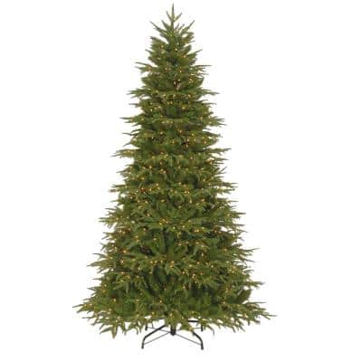 7.5 ft. Northern Frasier Fir Artificial Christmas Tree with Clear Lights