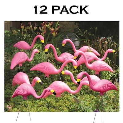 Pink Flamingo (12-Pack)