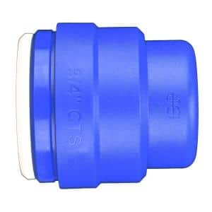 3/4 in. Blue Plastic Push-to-Connect End Cap Fitting (5-Pack)