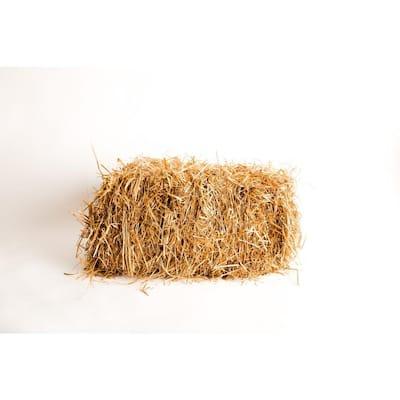 Seeding Straw
