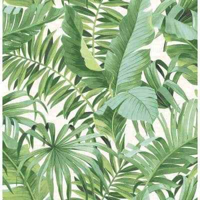 Alfresco Green Palm Leaf Paper Non-Pasted Wallpaper Roll (Covers 56.4 Sq. Ft.)