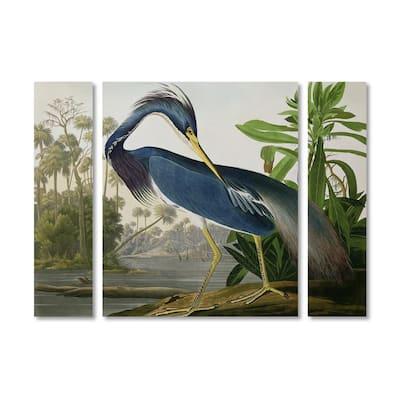 "30 in. x 41 in. ""Louisiana Heron"" by John James Audubon Printed Canvas Wall Art"