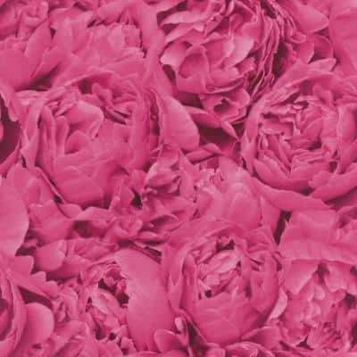 Rosenfield Pink Floral Wallpaper