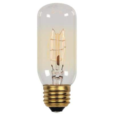 60-Watt Timeless Vintage Inspired Incandescent T12 Light Bulb