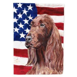 Caroline S Treasures 2 33 Ft X 3 33 Ft Polyester Usa American 2 Sided Flag With Japanese Chin 2 Sided Flag Canvas House Size Heavyweight Ss4223chf The Home Depot