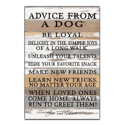 """""""Advice From A Dog"""" Reclaimed Wood Decorative Sign"""