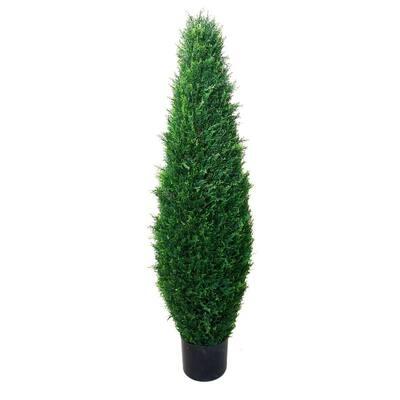 3.5 ft. Cypress Tree