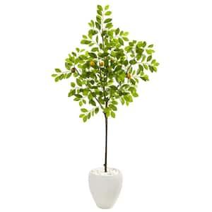 68 in. Lemon Artificial Tree in White Planter
