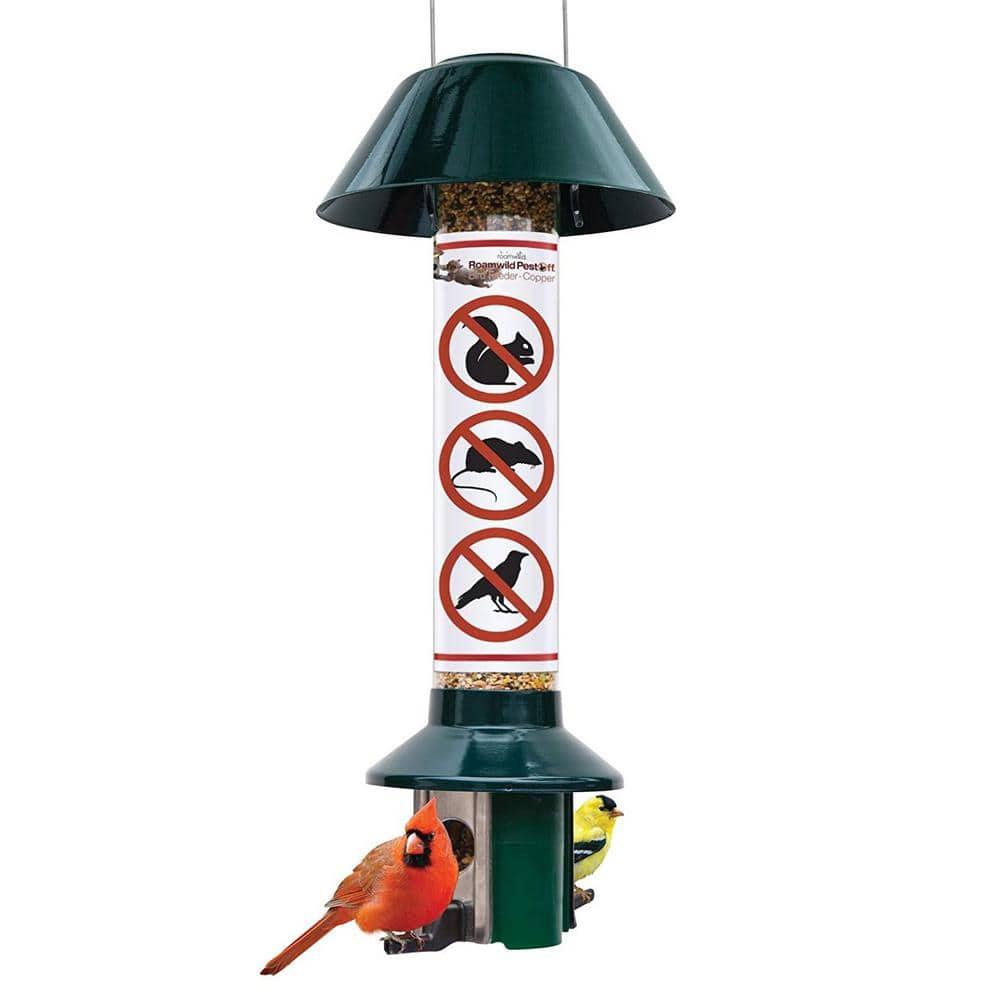 Tin Sign XXL Bird Cardinal bird