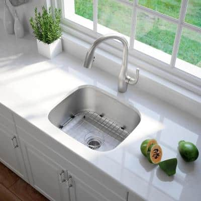 Premier Undermount Stainless Steel 20 in. Single Bowl Kitchen Sink