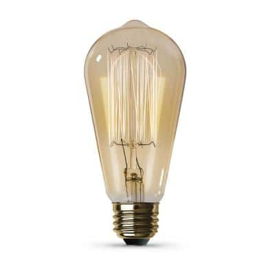 60-Watt ST19 Dimmable Incandescent Amber Glass Vintage Edison Light Bulb with Cage Filament Soft White