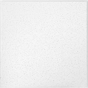 Fine Fissured 2 ft. x 2 ft. Tegular Ceiling Tile (64 sq. ft. / Case)